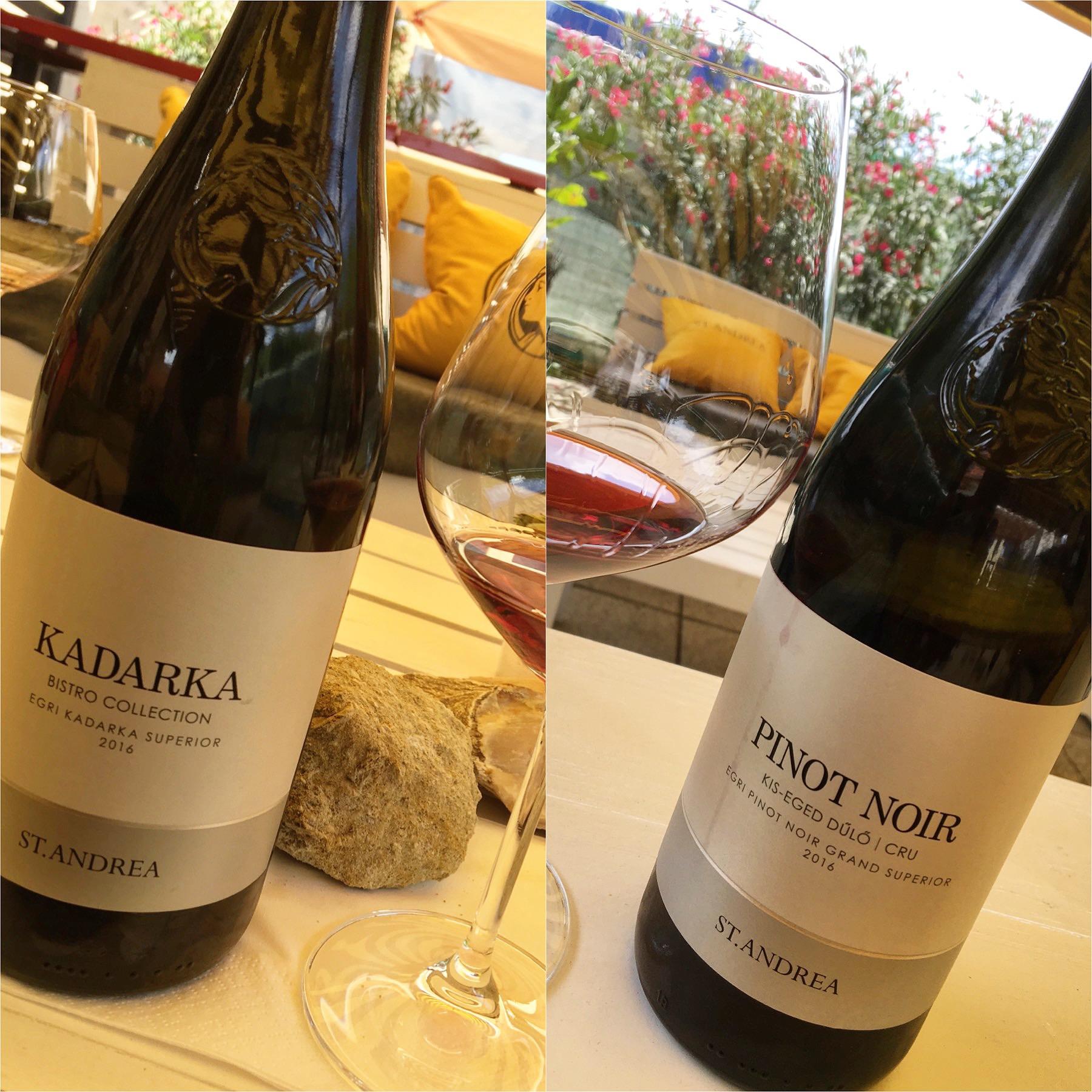 St. Andrea Kadarka & Pinot Noir