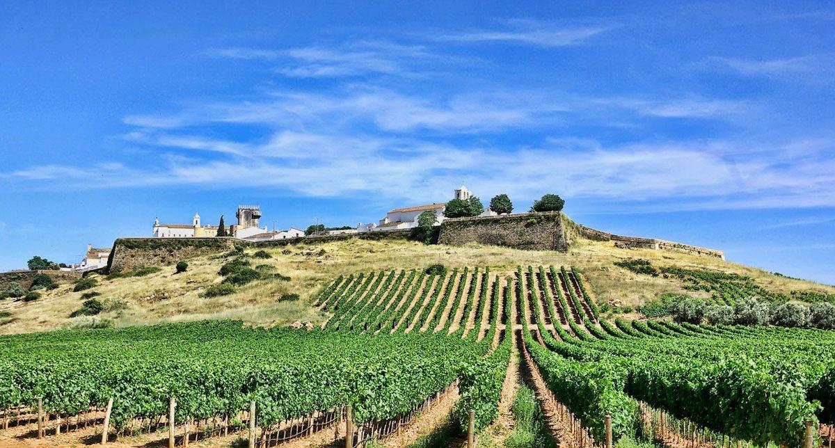 Courtesy Wines of Alentejo